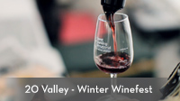 20 Valley - Winter Winefest